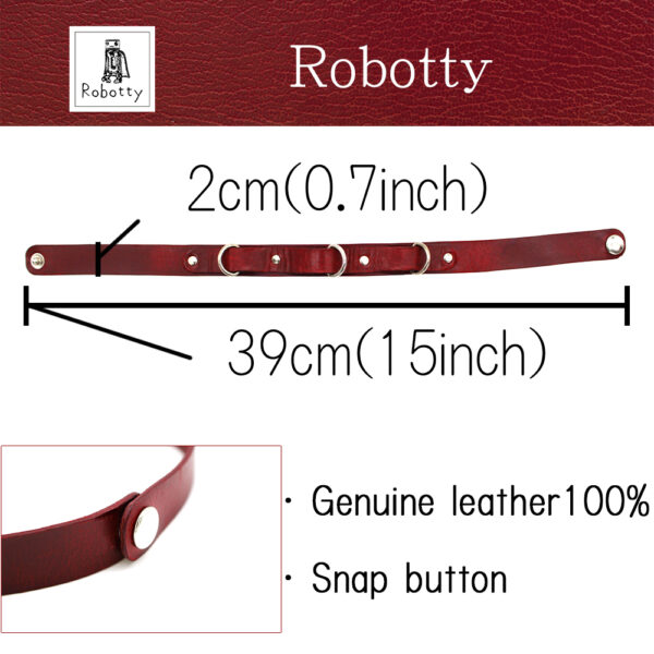 robotty 2